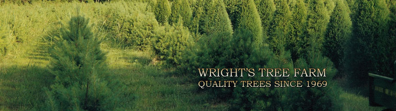 Picture of Wright's Tree Farm